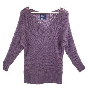 American Eagle Outfitters Purple V-Neck Sweater